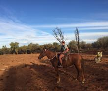 Central Otago vet Amy Watts has been mustering in Australia both on horseback and motorbike. ...