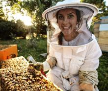 Southland beekeeper Steph Munro in her happy place checking her bees. PHOTOS: JAMES JUBB