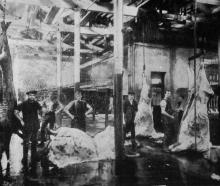 Butchers at work dressing bullock bodies at the Dunedin City Abattoirs. - Otago Witness, 21.10...
