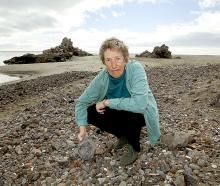 Redcliffs Residents' Association secretary Pat McIntosh is not convinced Clifton Beach will...