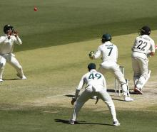Kane Williamson was caught at short leg to an ominous ball from Nathan Lyon. Photo: Getty Images