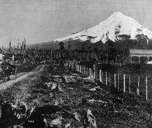 Snow-capped Mt Egmont (Taranaki), 8260ft. — Otago Witness, 2.12.1919.