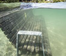A park bench is submerged in Lake Wanaka. PHOTO: RICHARD SIDEY/GALAXIID