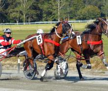 Heisenberg (5) and Driver Tim Williams shrug off the challenge of Nandolo and Jonny Cox to win...