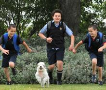 Excited to start the school run with new uniforms are twins Phoenix and Malaki (9) and Chance (12...