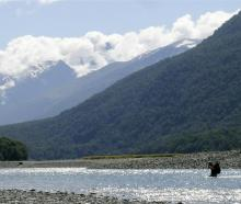 A tramper wades across the Makarora River, above the confluence with the Young River. Photo by ODT.