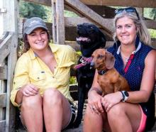 Elle Perriam (left) with Jess the Huntaway and Harriet Bremner with Poppy. Photo: Dana Johnston