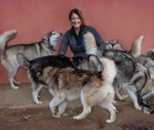 Husky Rescue NZ founder Michelle Attwood says the charity has been hit hard financially. Photo:...