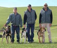 The Waitahuna Collie Club recently bestowed life membership on three 