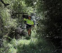 AB Lime conservation and biodiversity ranger Ollie Crawshaw has helped develop a native nursery...
