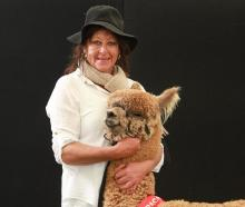 Inca Lodge owner Kim Greenfield won the Mid Dark Fawn Intermediate Male title at the New Zealand...