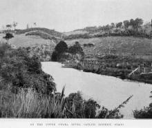 The upper Owaka River, in the Catlins district, Otago.  — Otago Witness,  26.10.1920. COPIES OF...