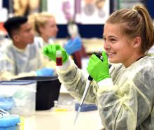 Steph Bartlett (17), of Kerikeri High School, Northland, takes part in a genetic education...