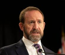 Health Minister Andrew Little has outlined the Government's plan to fix New Zealand's healthcare...