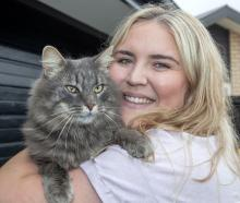 Hector was reunited with his owner, Ashleigh Ross, after two-and-a-half years. Photo: Geoff Sloan