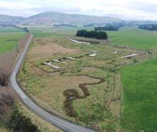 The community-led Waipahi Wetland project, in West Otago. PHOTO: SHANE BOCOCK/SUPPLIED