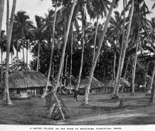 A native village on the road to Mulifauna Plantation, Samoa. — Otago Witness,12.7.1921.