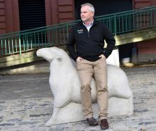 Beef + Lamb New Zealand Genetics livestock specialist Jason Archer relaxes on a sheep statue in...