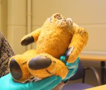Little Ted's body is in the keeping of Toitu Otago Settler's Museum along with the other soft toy...