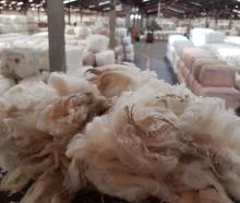 Wools of New Zealand and Primary Wool Co-operative seem set to merge. PHOTO: ODT FILES