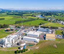 The Fonterra Stirling cheese plant will be coal-free and using wood biomass to fire the site by...