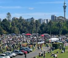Protesters assembled at the Auckland Domain today. Photo: NZ Herald