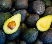 The avocado industry says that the current cheap prices for avocados are unrealistic. Photo:...