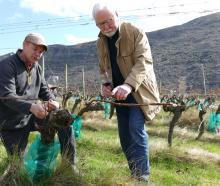 Gibbston Valley Winery chief winemaker Christopher Keys (left) and Gibbston wine pioneer Alan...