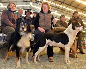 Watching the dog trials are Jackie Clarke, of Table Hill, and Sharon Paterson, of Waikaka, with...