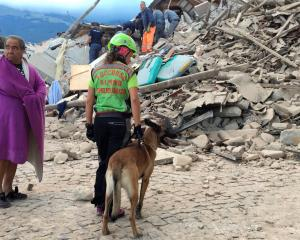 A man wrapped in blanket looks on as a rescuer with a dog stand in front a collapsed house...