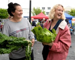 Karleigh O'Connor (22), left, and Emma Lunniss (23) check vegetables at McArthurs Berry Farm Outram's stall at the Otago Farmers Market at Dunedin Railway Station. Photos by Linda Robertson.
