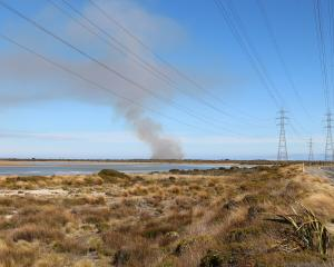 Smoke rises from a scrub fire at Tiwai Point, in Southland. Photo: Shane Rhodes