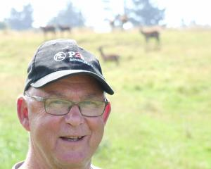 Deer Industry New Zealand producer manager Tony Pearse is optimistic about the future of the industry. Photo by Sally Rae.