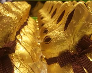 A flood of Easter rabbits. Photos: David Loughrey.