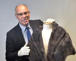 Murray Lawrence admires a sapphire marmot stole from the estate of his late aunt, Dunedin's first female ''acting detective'' Lenore Wilson (nee Lawrence). Photo: Peter McIntosh