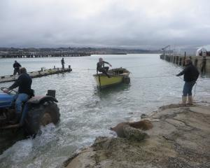 Friendly Bay Boat Society's Peter Thorn drives the tractor as fellow members help to pull the...