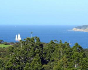 Tawharanui Regional Park offers spectacular views to the islands of the Hauraki Gulf beyond a...