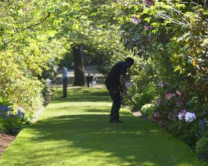 Gardeners tidy the Cherry Walk in the upper garden. Photos: Gerard O'Brien