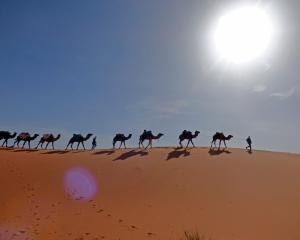 A desert sunrise from the top of a dune in the Sahara makes a lasting impression on a trip in...