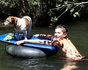 Sam Burke (12) and Herbie the dog, enjoy a dip in the Otematata River. Photo: Anna Spittle
