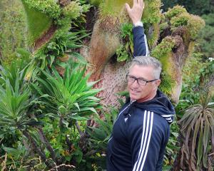 St Clair resident Paul Martin stands next to an Echium candicans (Pride of Madeira) with a rare fasciation near Cargill's Castle. Photo: Christine O'Connor