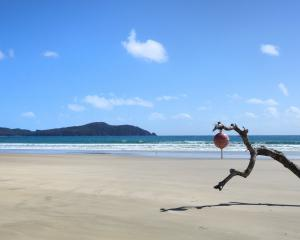 A buoy hangs from a piece of driftwood on the beach at Mason Bay. Photos: Hayden Meikle