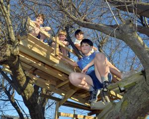 Enjoying their tree house are (from left to right) Devon Oke (10), Logan Oke (6), neighbour Emma Simpson (11), and Ethan Oke (12). Photos: Gerard O'Brien