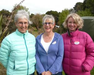 Sue Maturin, of Dunedin, and Karin and Michelle Ericson, of Christchurch.