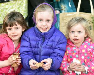 Sisters Anneke (5), Annabelle (7) and Allegra France-Hudson (3), of Dunedin.