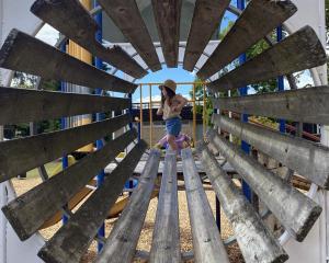 Rose Jordan (3), of Dunedin, enjoys playing at Lion Park, Te Anau. Photo: Robyn Jordan
