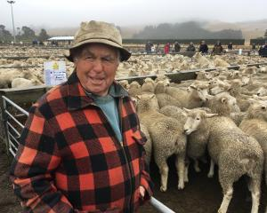 Oxford farmer Ken Turpin was pleased to see some drizzle at this month's Sheffield ewe fair,...