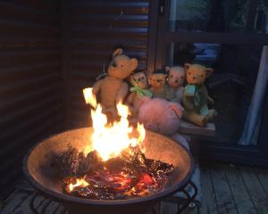 These bears in Quail Rise, Queenstown, are feeling the cold but help is being provided. PHOTO:...