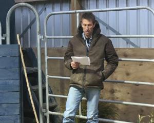 Sam Holland welcomes vendors to the Hemingford on-farm bull sale last week.
