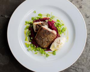 Pan-fried grouper with beetroot puree and horseradish cream. Photo: Emma Willets